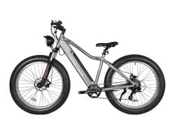 "26"" Fat Tires Electric Bicycle 800W Speed Sensor Suspensions"