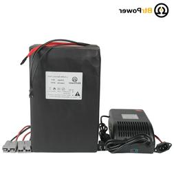 48v 20Ah LiFePO4 Lithium Battery Pack for 1000W Ebike Scoote
