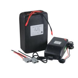 48V20AH LiFePO4 Lithium Battery Pack Power for 1000W Electri