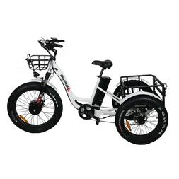 Electric Fat Tire Tricycle/Trike, 500W 48V Hybrid Bicycle/E-