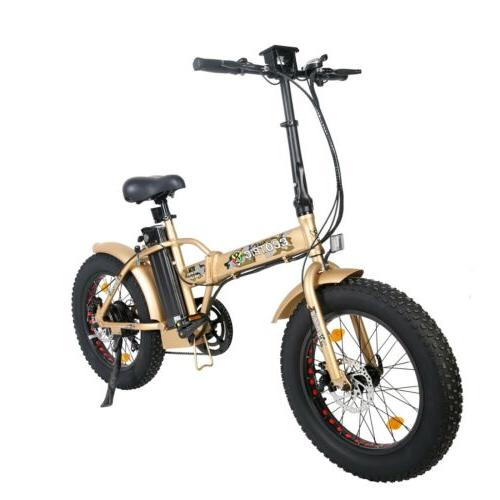 ECOTRIC FOLDING 48V12.5Ah Electric Bicycle E-Bike LCD Assist